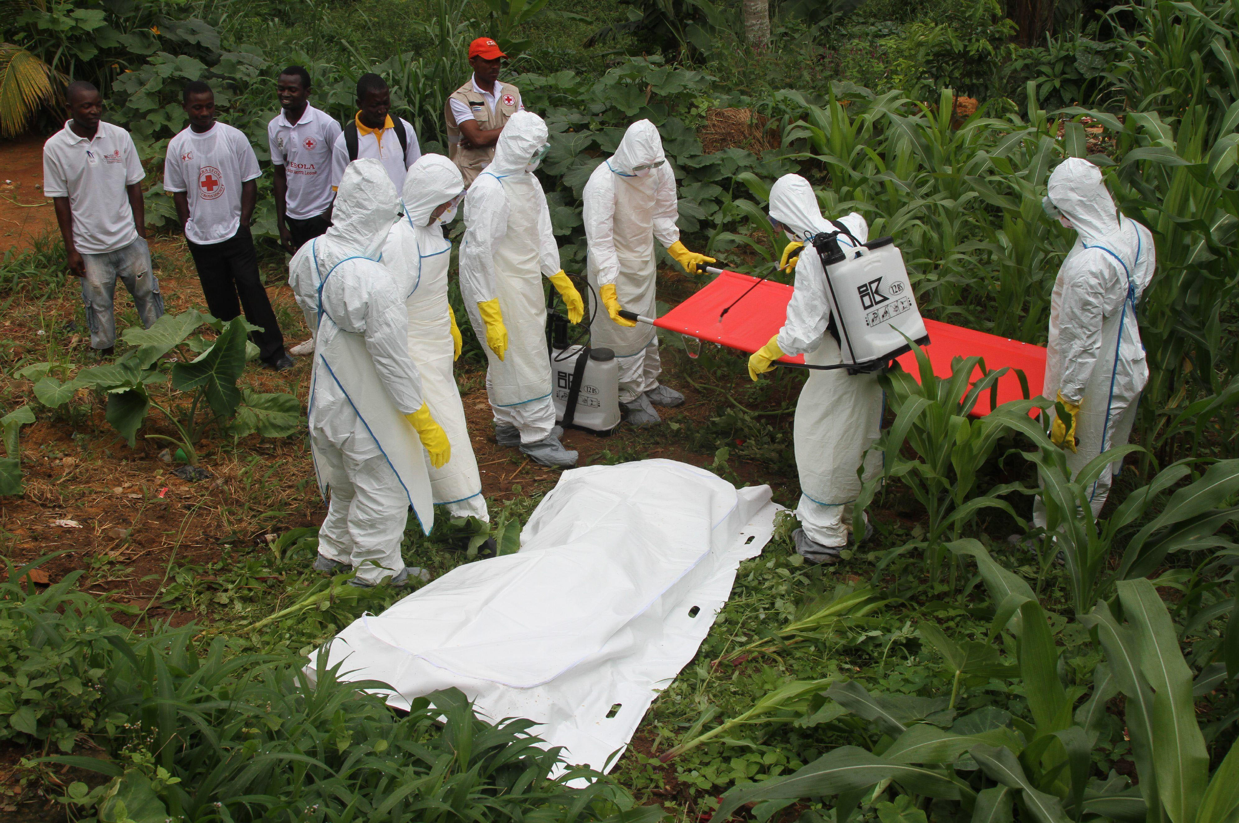 Health workers prepare to carry the body of an Ebola virus victim in Kailahun, Sierra Leone. PHOTO: REX FEATURES
