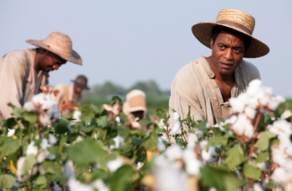 Solomon Northup working in a cotton field REX FEATURES