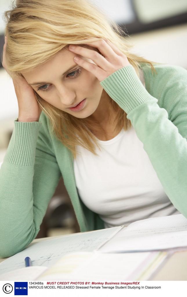 KU warns: Don't buy an essay