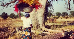 aberima carrying straw with print cloth