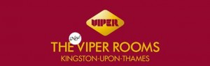 Kingston's new cocktail bar-The Viper Rooms