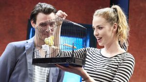 John Malkovich's Good Canary sings at Kingston's Rose Theatre