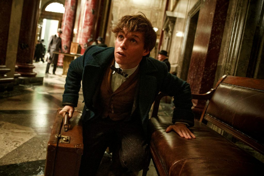 Eddie Redmayne as Newt Scamander in Fantastic Beasts and Where to Find Them (Photo by Moviestore)
