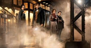 Fantastic Beasts Hits Cinemas This Friday Photo credit Rex features