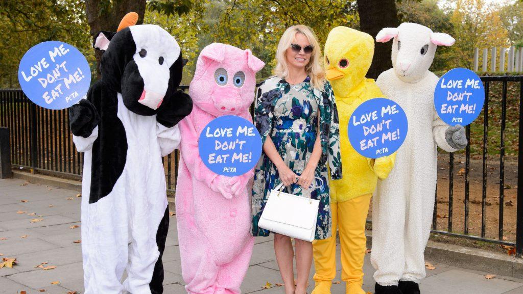 Vegan peer pressure is real: just say no to dairy-free alternatives