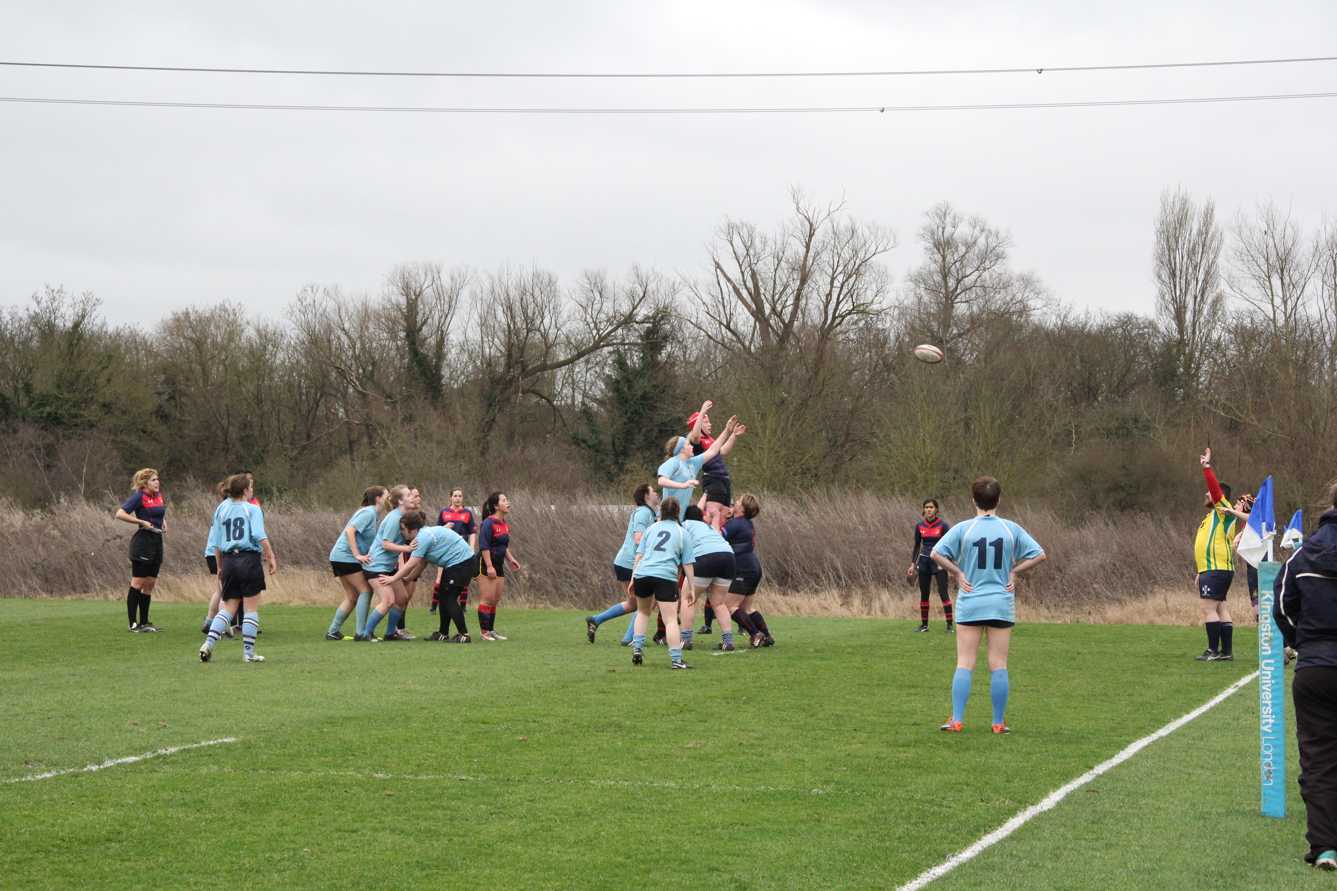 Imperial is awarded a line-out. Photo Credit: Tessa Neal