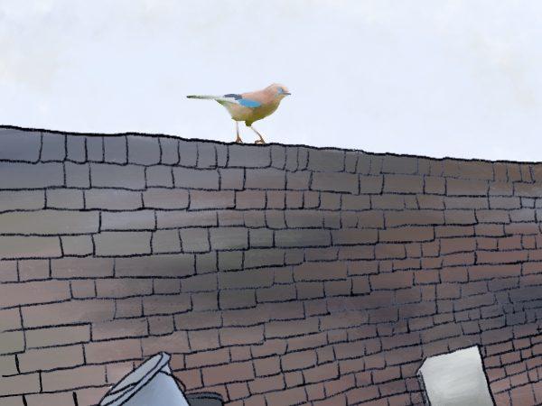 An illustration of a bird sitting on a brick wall.