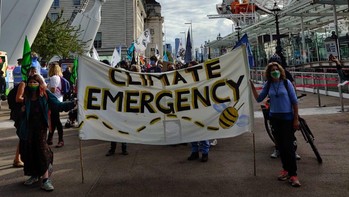 KU Environmental Society makes climate change priority despite lockdown