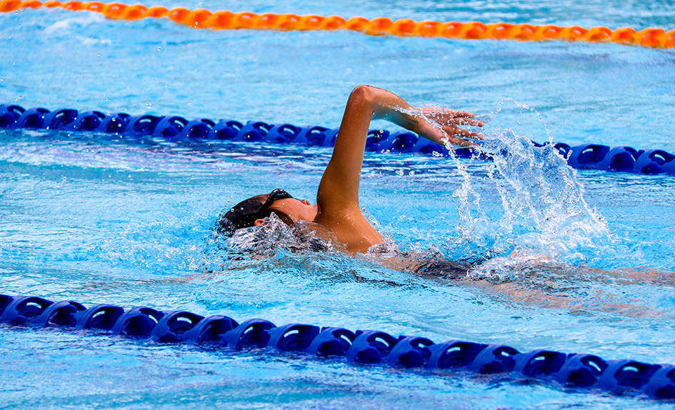 Wide shot of a person swimming in swimming lane at a swimming hall